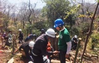 Rokko Forest Creation Tree Planting