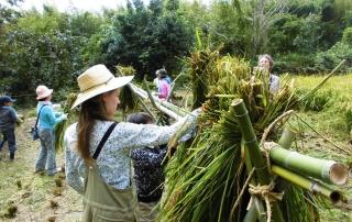 Rice Harvest Workshop 2018 in Ozo